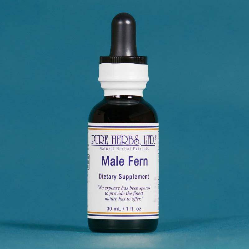 Male Fern - Pure Herbs - 4 oz