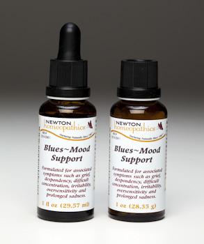 Blues Mood Support